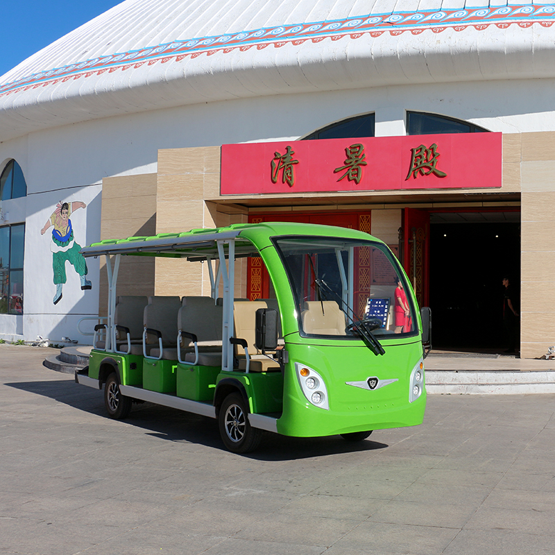 Electric Sightseeing Cars A14 Green