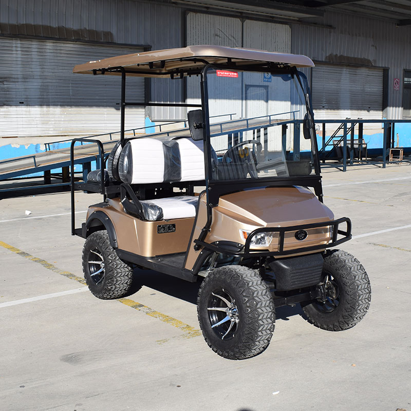 Golf Cart L2C Colorful